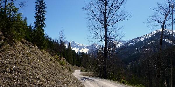 Schotterweg im Gleirschtal