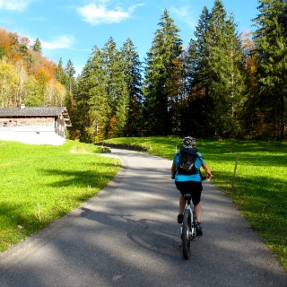Mit dem Ebike unterwegs im Bregenzerwald