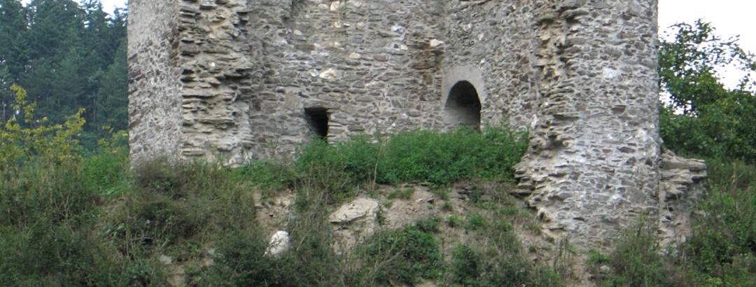 Die Ruine Lauksburg