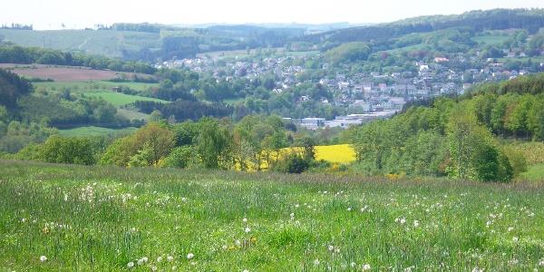 Blick über Westenfeld