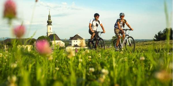 Tauern-, Mozart- und Salkammergut-Radweg bei Bergheim