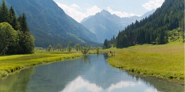 Tettermoor - Untertal, Themenweg Wilde Wasser