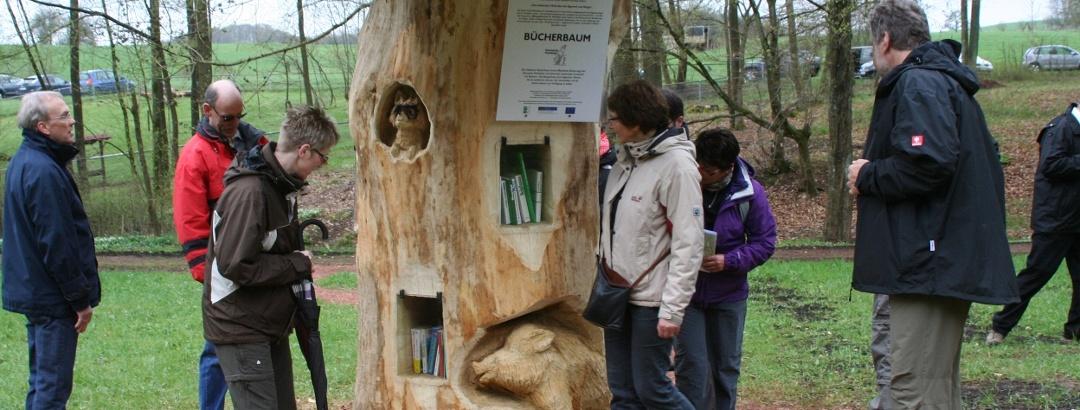 Bücherbaum am Nahequelle-Pfad