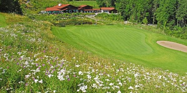 Golfplatz Oberallgäu Seehäusl