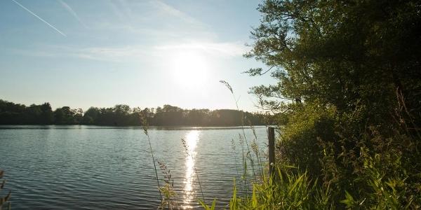 Westerwälder Seenplatte, Westerwald-Rhein-Radweg