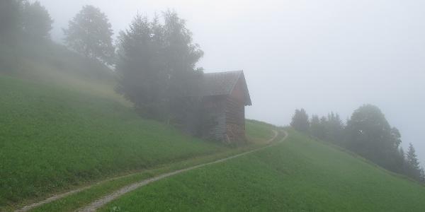 Weg und Stall in Dünserberg-Rongelonsch