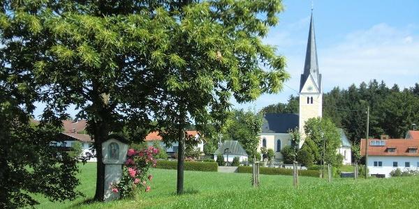 Esskastanie mit Greimhartinger Kirche