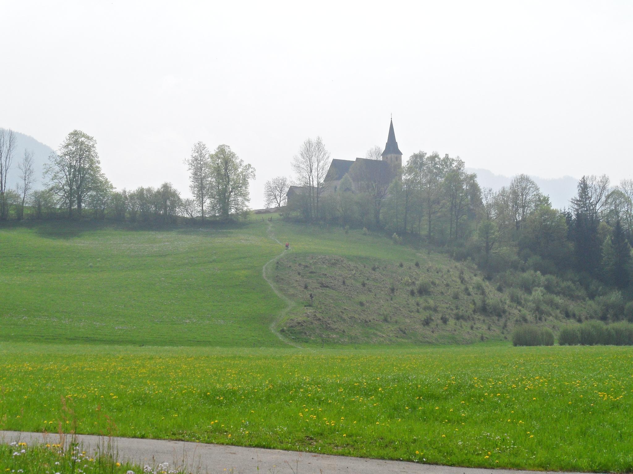 Veranstaltungen - Gemeinde Frauenstein