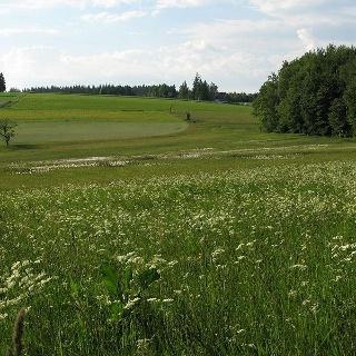 Naturschutzgebiet Kreuzmoos