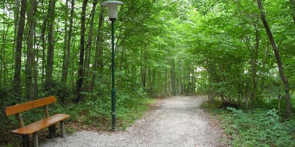 Auch in der Waldpassage beim Kroissengraben gibt es Bänke.