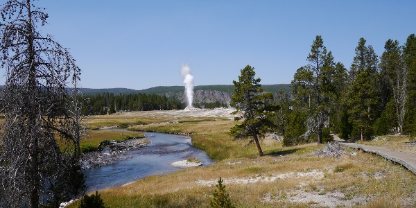 On Upper Geyser Basin Trail