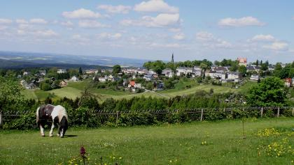 Panoramablick vom IFA Ferienpark