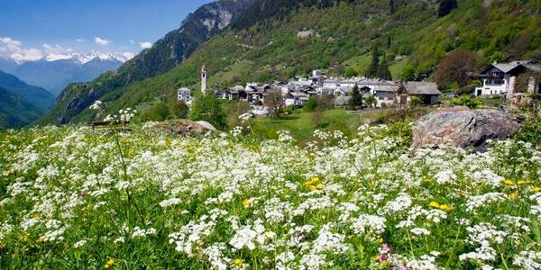 Soglio in primavera