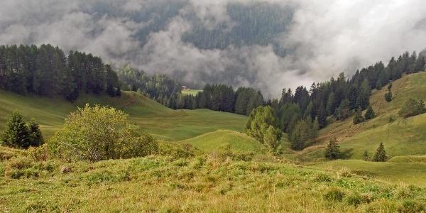 Über dem Frötschbachgraben