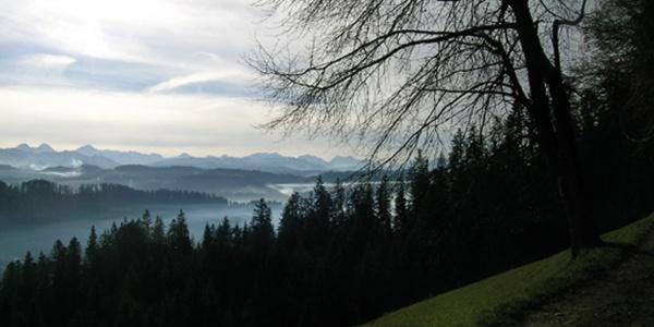 Rund um den Ober Frittenbachgraben