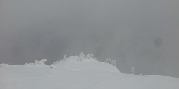 Kleine Überwechtungen im Gipfelbereich