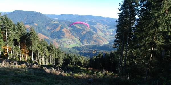 Start vom Schäfersfeld in Richtung Löcherberg