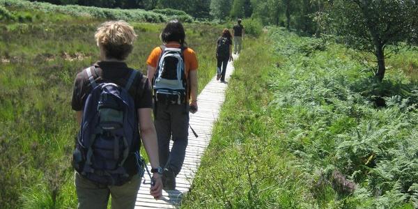 Steg mit Wanderern