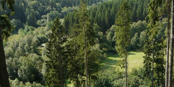 Perlenbachtal