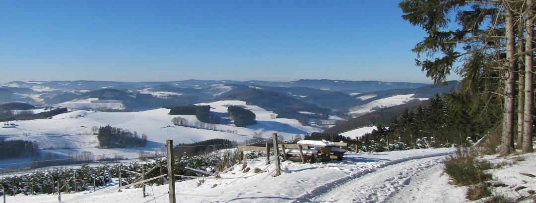Ausblick vom Gelsterhagen