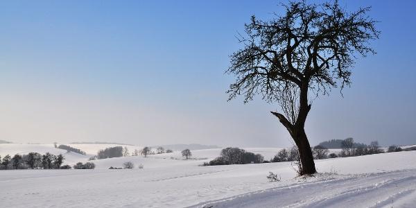 Auch im Winter eine tolle Tour