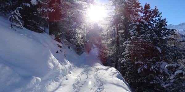 Chemin de randonnée hivernale enneigé, peu avant Tufteren
