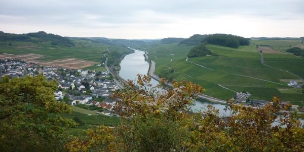 Views of Nittel and the Moselle from the cliff path