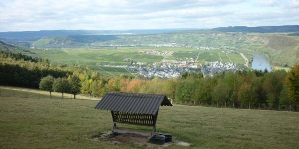 Blick vom Wildgehege am Ferienpark Sonneberg auf Leiwen. Im Hintergrund langgestreckt Klüsserath.