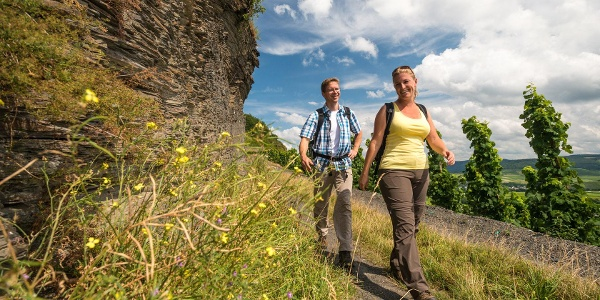 Slate rocks along the trail on the Brauneberg below the Kammer rock