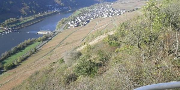 Blick vom Kirster Grat ins Moseltal bei Enkirch