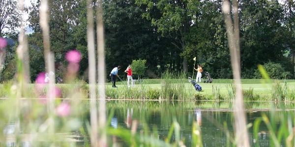 Almenland Golf
