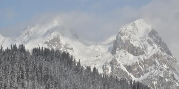 Kaiserschild und Hochkogel von der Teicheneggalm (Eisenerzer Alpen)