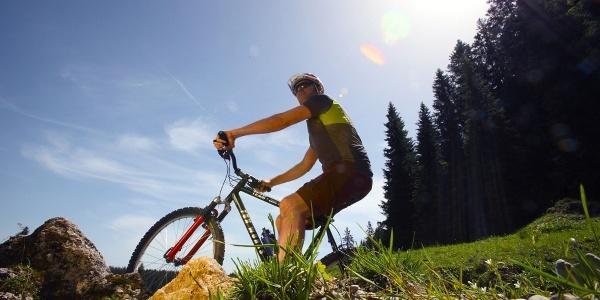 Mountainbiketour Aufacker Runde