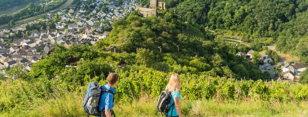Aussicht auf die Niederburg und Kobern-Gondorf