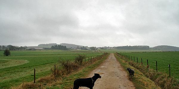 Unterwegs in den Feldern