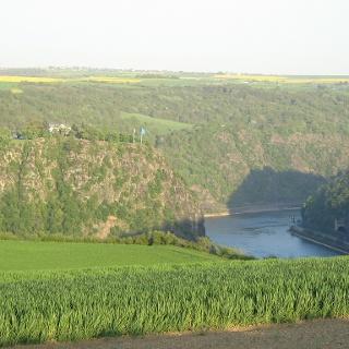 Blick vom Panoramaweg auf den Loreleyfelsen