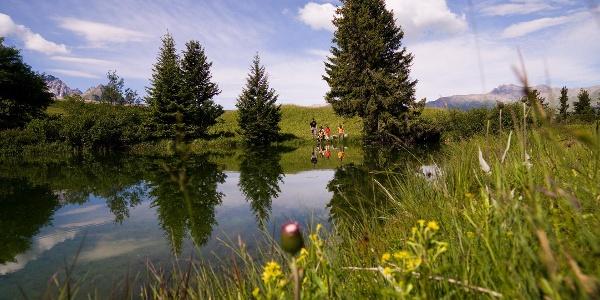 Bergsee auf der Alp Flix