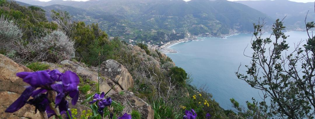 Vista a Monterosso y Cinque Terre